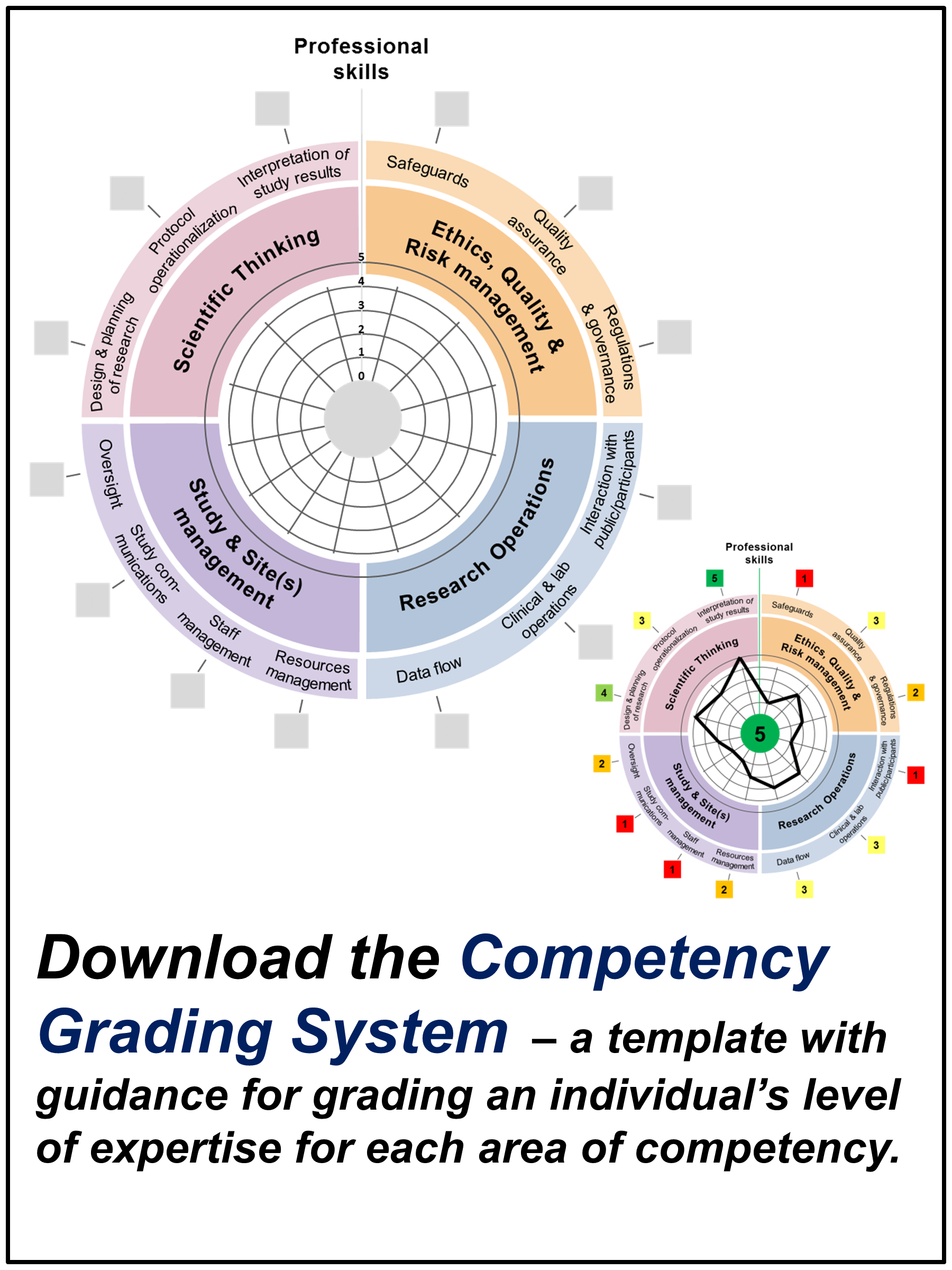 global competency framework for research