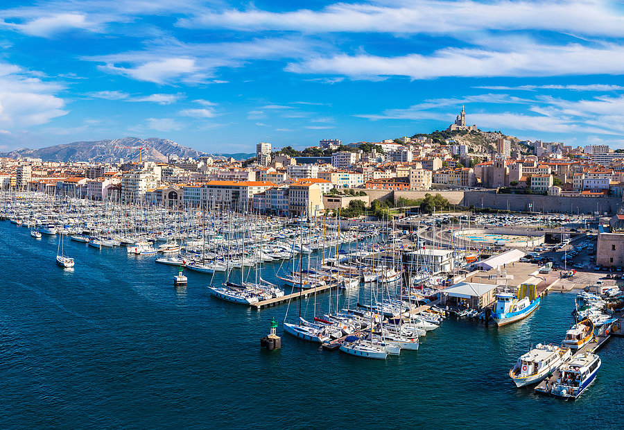 article international symposium on zika virus research in marseille
