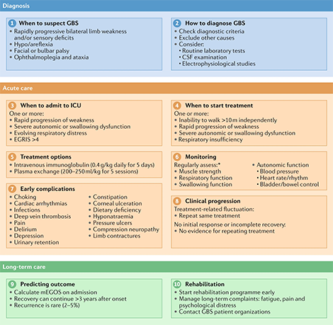 10-step approach for the diagnosis and management of Guillain–Barré syndrome